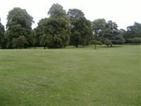 Chineham Park