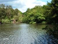 St Ives Estate Country Park