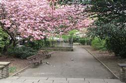 Duncan Terrace Gardens