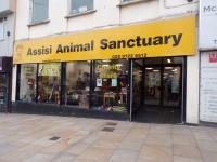 Assisi Animal Sanctuary
