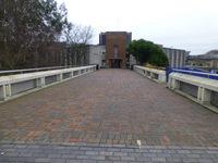 Eliot College