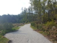 Bennachie Centre - Discovery Trail