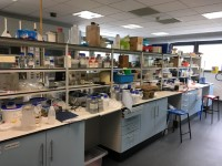 Centre for Effective Learning in Science (113)