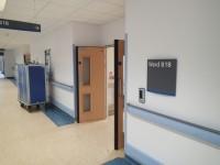 Ward B18