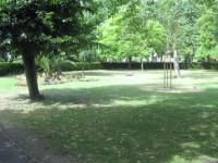 Museum Gardens