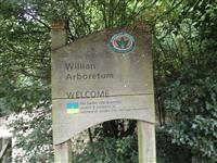 Willian Arboretum