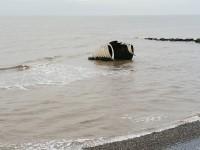 Mythic Coast Artwork Trail