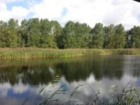 RSPB - Lakenheath Fen Trails