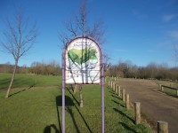 Stanmore Country Park