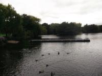 South Norwood Lake & Grounds