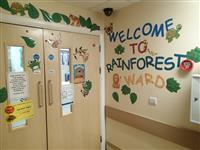 Rainforest Ward