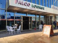 Falco Lounge