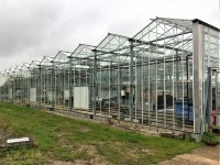 Horticulture Glasshouse
