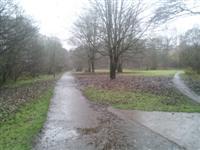 Allander Park