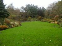 Ballyrobert Cottage Garden