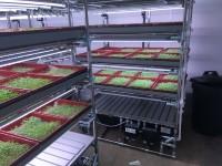 Home Farm Dairy (015) - Vertical Farming