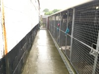 Animal Unit Kennels