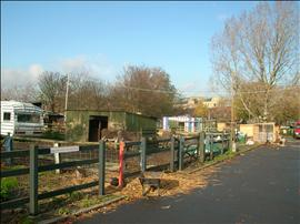 Stepney City Farm