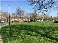 Bellingham Green