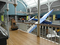 National Museum of Scotland - Level 5