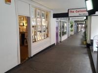 Cartoon Gallery Ltd