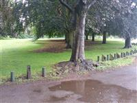 Closes Recreation Ground