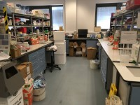 Centre for Effective Learning in Science (206)