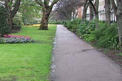 Compton Terrace Gardens