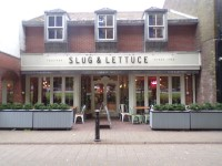 Slug and Lettuce