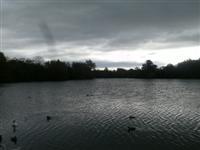 Emberton Country Park