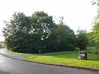 Parkfields Park & Standing Stones