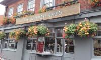 Garden Shed Pub