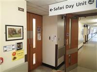 Safari Day Unit