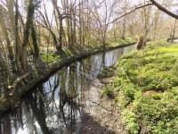 Waterlink Way - Ladywell Fields Route Plan