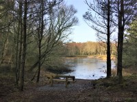 Culbin - Hill 99 and Gravel Pit Ponds Trail