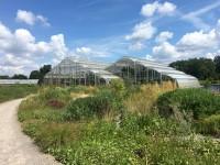 RHS Garden Wisley Glasshouse