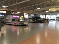 Baggage Reclaim and Customs