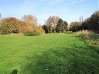 Hatch Warren Park