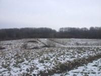 Waresley and Gransden Woods Nature Reserve