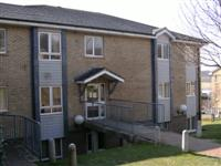 Paddock Field Residence